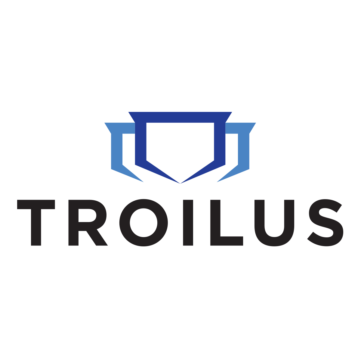Troilus Gold makes $12m share offering
